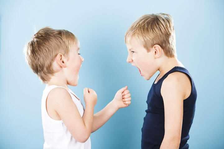 Физическая агрессия у мальчиков в детском саду