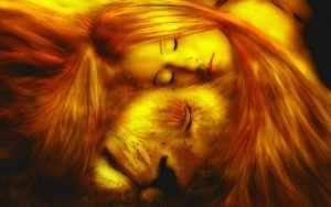 Совместимость Льва и Девы