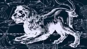 Выбор пары для Льва